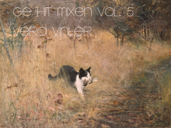 GE HIT MIXEN VOL 5 vera vinter