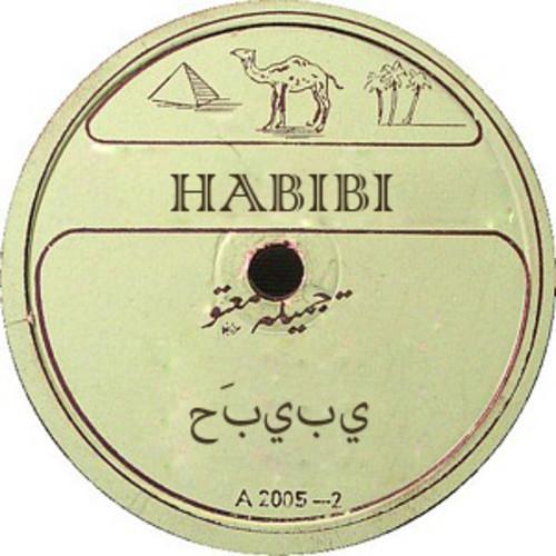 Polisen Habibi