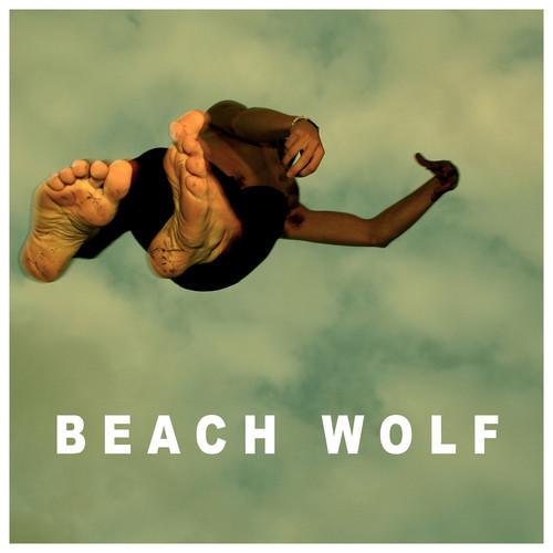 beach wolf roshambo