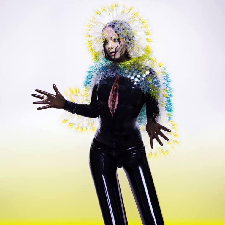 Björk-Vulnicura-Cover